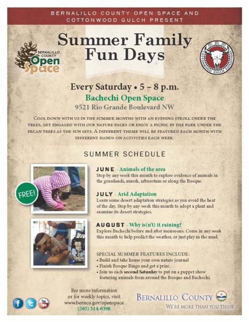 summer family fun days flyer